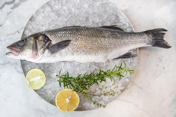 Риба Сібас дикий в солі (доставка)